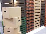 Cutii din carton pentru mere 12 kg (Telescop), miez de nuca 10 kg.