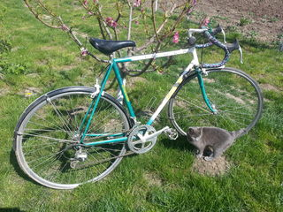 Bicicleta Cyril Guimard