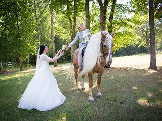Свадьбы, крестины,торжества,утренники, виньетки. сезонные скидки
