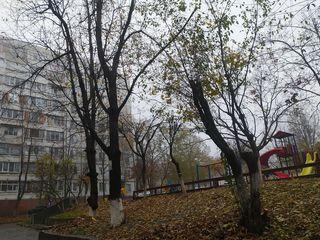 Super apartament, P.Zadnipru, 2 camere, 2 balcoane, reparatie capitala!