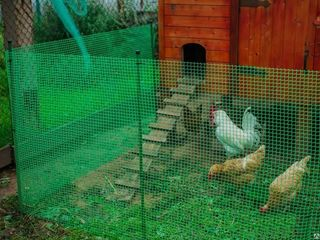 Пластиковые и капроновые вольерные сетки для птицы.