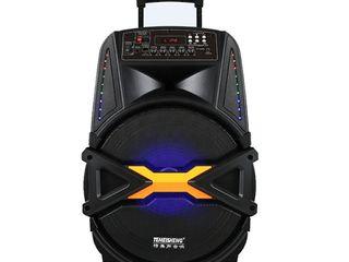 Sistem acustic portativ Temeisheng A12-41 cu garantie 1 an si cu livrare gratuita