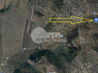 Teren agricol, 420 ari, lângă lac, Tohatin, 65000 €