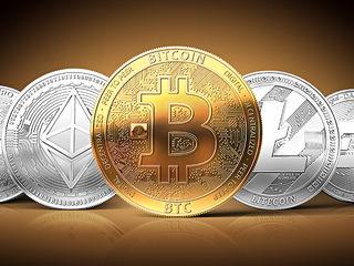 cum să tranzacționați bitcoin pentru un profit grav