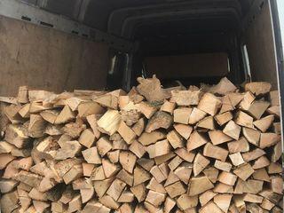 Vind lemne
