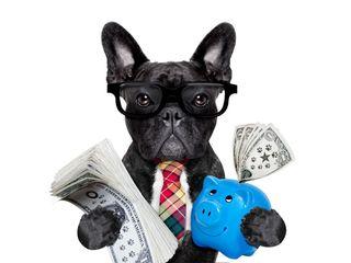 Credite pentru afaceri cu 0 % pina la 5000 EUR !!!!!