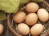 Ouă de gaina bune pentru incubație.
