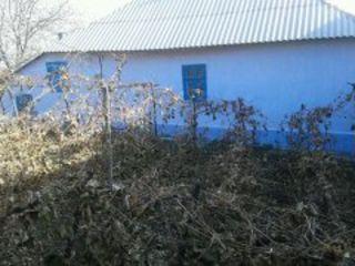se vinde casa la Rezina.
