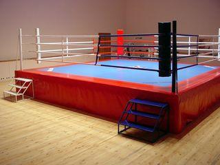 татами, боксёрский ринг, спортивные маты, гимнастические маты, борцовский ковёр