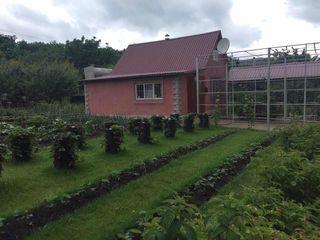 Casa/Vila, 10 km de la Balti, in s. Marinesti rl Singerei