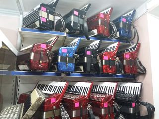 Мир аккордеонов в музыкальном магазине Pro-Arta ул Пушкина 50 А
