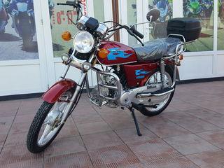 Alte mărci viper Alpha 49/110cc