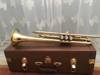Trompeta Cranes