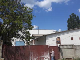 Fabrica avicola. ferma de pui broiler. Floreni.