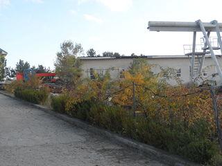 Dau in arenda incapere , 860 m/2 plus oficiu, fost preconizat pentru fabrca de cusutoria hainelor.