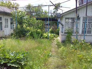 Casa cu 0.25 hectare de pamint Ciocilteni, r-ul Orhei