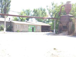 Продается база - Мобилкомсервиче. ул.Узинелор 96/2. Земля в собственности - 82 сотки