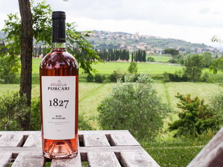 Индивидуальная экскурсия в Purcari Winery по супер цене!!! Не упустите!!!
