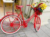 Бесплатный вело-сервис!!!