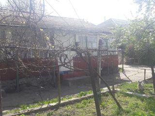 Продаётся дом с большим участком в Кодру!!!