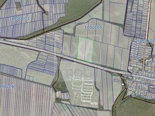 Vânzare teren agricol, 440 ari, satul Țânțăreni