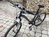 Rock rider 200€