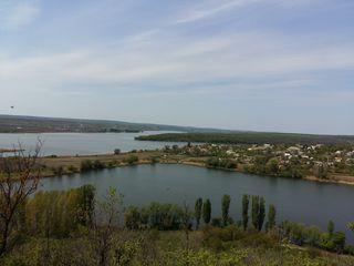 Дом-дача в с Гоян , Дубоссарского района на самом берегу Днестра. Фруктовый сад , виноградник