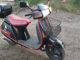 Honda Lead SS