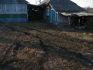 Se vinde casa in satul Cotiujeni Mari raionul Șoldănești