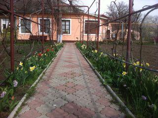 Дом с приусадебным участком на Кишинёвской