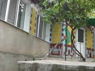 Продается дом в Новых Аненах