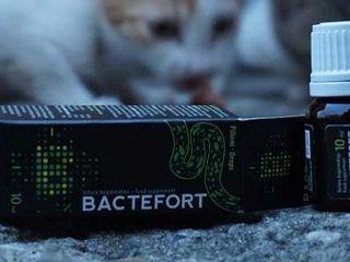 Bactefort - капли против паразитов. Полностью избавит от паразитов и глистов.