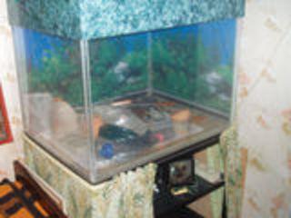 Продам аквариум б/у 250 литров (оргстекло).