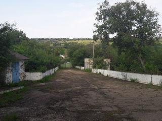 Se vinde spatiu producere/depozitare r. Cahul s. Huluboaia