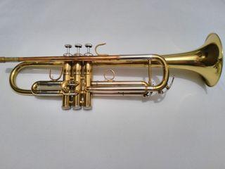 Trompeta Prstini(USA)