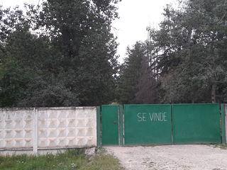 Se vind încaperi pentru  producere, depozitare in raionul Ungheni s. Năpădeni