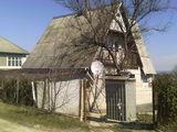Добрый дом в добрые руки