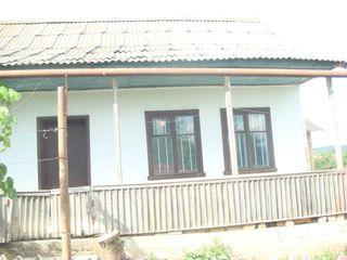 Urgent se vinde casa Puhoi!