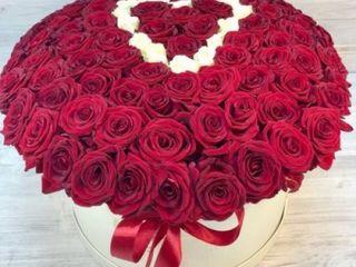 101 trandafiri cu livrarea 8 Martie. Trandafiri in cutie.