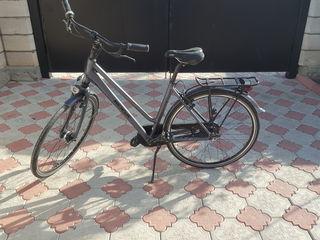 Bicicletă  koga din carbon