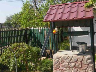 Продажа дома с садом и виноградником