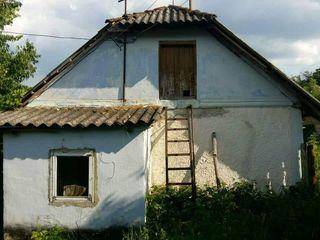 Se Vinde Casa in satul Ivancea,raionul ORHEI. 15 Hectare.In apropiere Iaz si padure