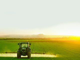 Cumpar teren agricol r.Ungheni