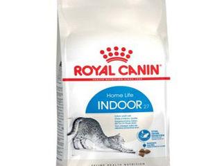 """"""" Indoor """" Royal Canin """" с доставкой по Кишиневу !!!"""