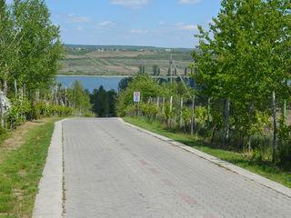 Teren pentru construcție , agricol, malul lacului Ghidighici, 15 ari