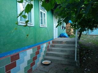 Casa cu gradina de vanzare