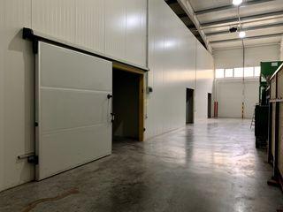 Depozit frigorific de vinzare de la proprietar  / холодильный склад от владельца