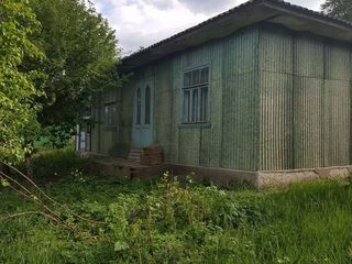 Casa in or. Riscani,cu teren 37.33 ari - 17 000 € Urgent