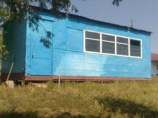 Sector linga padure cu vagon, traseul Chisinau-Orhei.