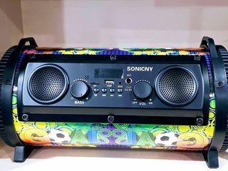 Boxa portabilă+USB+AUX+microfon+radio+telecomandă. 890 lei. Priviți video!